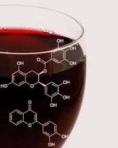 Fingerprinting-red-wine